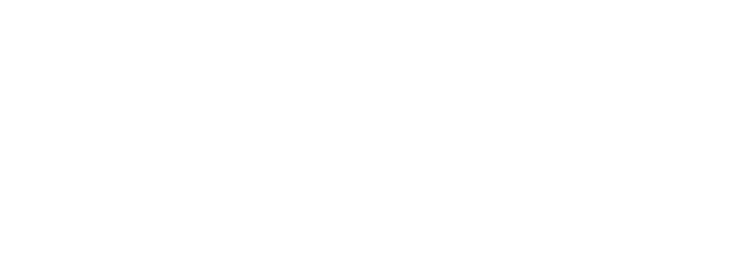 Internationaler Energiedetektiv